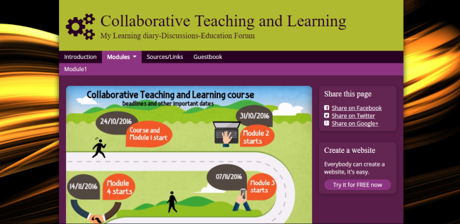 collaborative_teaching-learning-diary